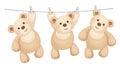 Vector hanging bears.