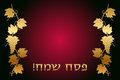 Vector happy passover hebrew wish card Stock Photography