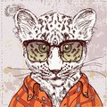 Vector hipster leopard with glasses and suit in on vintage textured paper background hand drawn sketchy illustration this Royalty Free Stock Images
