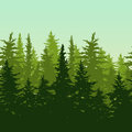Vector horizontal seamless background with green pine or fir-tree forest. Nature background with evergreen trees.