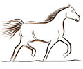 Vector horse drawing Royalty Free Stock Photo
