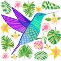 Vector hummingbird illustration. Flying tropical colibri bird