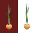 Vector Icon of Onion