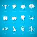 Vector icon set of human internal and external organs in flat style Royalty Free Stock Photo