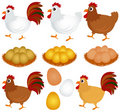 Vector Icons : Chicken, Hen, Rooster Royalty Free Stock Photo