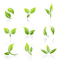 Vector icons green leaves collection of of Stock Photos