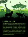 Vector illustration of african savannah safari landscape with wildlife animals silhouettes sunset design template