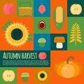Vector illustration of autumn harvest in flat style Royalty Free Stock Photo