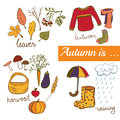 Vector illustration Autumn symbols