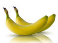 Vector illustration of bananas with reflection realistic Stock Photo