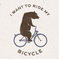 Vector Illustration of the bear on bicycle. Royalty Free Stock Photo