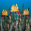 Vector illustration with beautiful yellow iris flower from triangles. Spring flowers Royalty Free Stock Photo