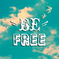 Vector illustration with blue sky, swallows and phrase Royalty Free Stock Photo