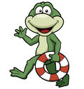 Vector illustration cartoon green frog Stock Photo