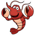 Vector illustration cartoon shrimp Stock Images