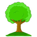 Vector illustration cartoon tree isolated on white background Stock Photos