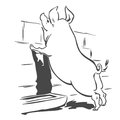 Vector illustration. Curious pig