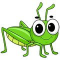 Vector Illustration of Cute Little Grasshopper Royalty Free Stock Photo