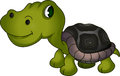 Vector illustration of cute turtle cartoon Royalty Free Stock Photos