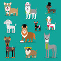 Vector illustration of a dog. Children`s funny pictures. Animals with accessories.