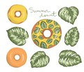 Vector illustration of donut with yellow icing with green monstera leaves. Original summer menu design. Tropical dessert concept.