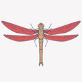 Vector illustration of dragonfly Royalty Free Stock Photo