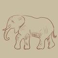 Vector illustration of an elephant. Royalty Free Stock Photo