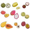 Vector illustration of exotic fruits.