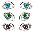 Vector illustration eye human black eyeball