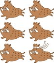 Cute running wild boar facial expressions set.Emotions happy,anger,gallant.Vector illustration.Flat design.Cartoon character set.