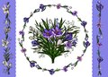 Vector illustration. Floral template of floral bunch, wreath of lilies and crocuses and borders isolated on white