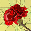 Vector illustration of flower red carnation. Royalty Free Stock Images