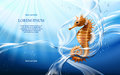 Vector illustration with flows and drops of crystal clear water of light blue color and sea horse Royalty Free Stock Photo