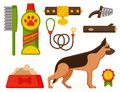 Vector illustration funny thoroughbred german shepherd dog attentive happy pet pedigree canine accessory.