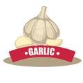 Vector illustration garlic with slice. Royalty Free Stock Photo