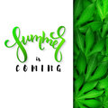 Vector illustration of hand lettering poster - summer is coming with paper sheet on a background aralia leaves