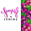 Vector illustration of hand lettering poster - summer is coming with paper sheet on a background of blooming