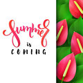 Vector illustration of hand lettering poster - summer is coming with paper sheet on a background of blooming anthurium