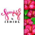 Vector illustration of hand lettering poster - summer is coming with paper sheet on a background of blooming hibiscus