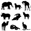 Vector illustration. Image rhino kangaroo, giraffe, elephant, zebra, snake, crocodile, camel, tiger a black silhouette. Royalty Free Stock Photo