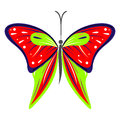 Vector illustration of insect, colorful red and green butterfly, isolated on the white background