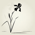 Vector illustration iris greeting card Royalty Free Stock Image