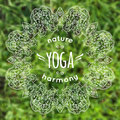 Vector illustration with mandala and yoga label on blurred grass