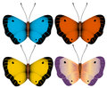 Vector illustration. Multi-colored butterflies Royalty Free Stock Photo
