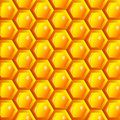 Vector illustration of a natural background with honeycombs eps Royalty Free Stock Photo