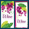Vector illustration of pink grape vine and green leaves. Set of Royalty Free Stock Photo