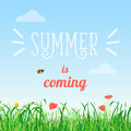 Vector illustration poster of summer is coming words in the field with flowers and a bee flying.