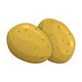Vector illustration of potato Royalty Free Stock Photo