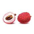 Vector illustration of a realistic style of litchy whole fruit and a cut litchi on white.