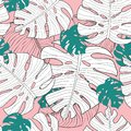 Vector illustration of seamless exotic floral pattern with green and white monstera leaves on pink background, tropical